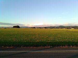 羽後町 田園風景