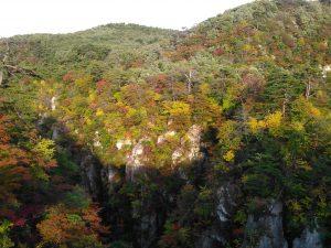 鳴子狭 断崖絶壁 紅葉
